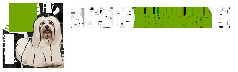 http://www.alcado.pl
